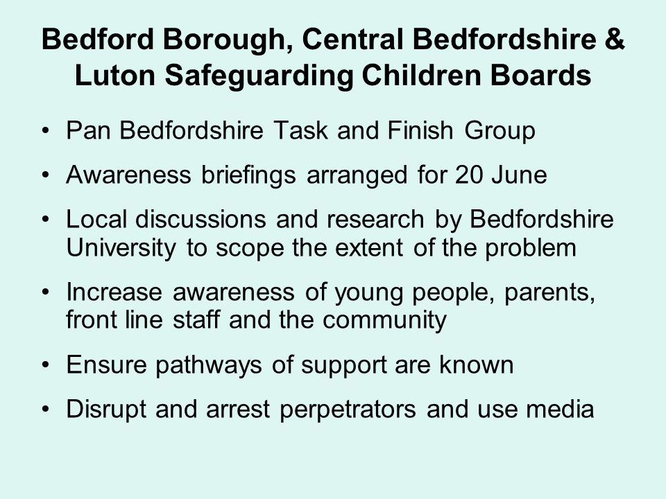 Bedford Borough, Central Bedfordshire & Luton Safeguarding Children Boards Pan Bedfordshire Task and Finish Group Awareness briefings arranged for 20