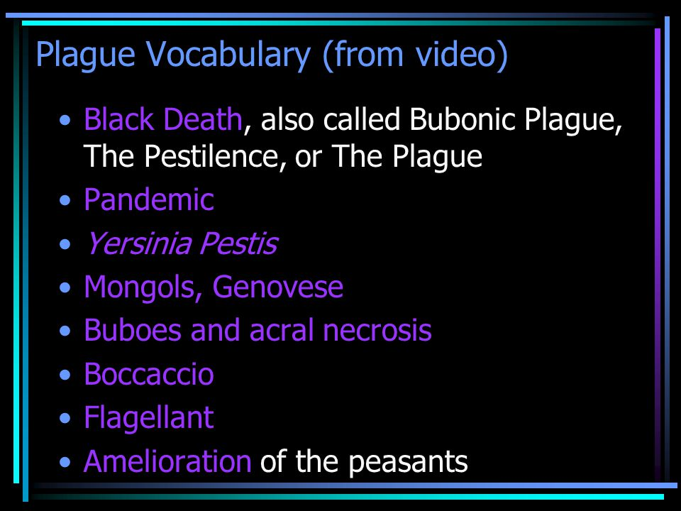YOUTUBE: The Black Death History Teachers use Gwen Stefani's Hollaback Girl to explain this pandemic: Oo-oo Fleas on Rats.