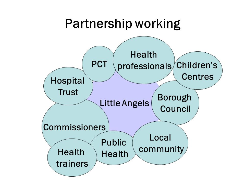 Partnership working Little Angels Commissioners Public Health Hospital Trust PCT Borough Council Local community Children's Centres Health trainers Health professionals