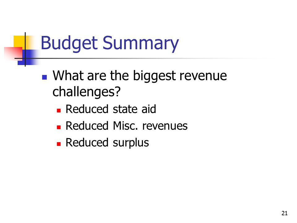 Budget Summary What are the biggest revenue challenges.