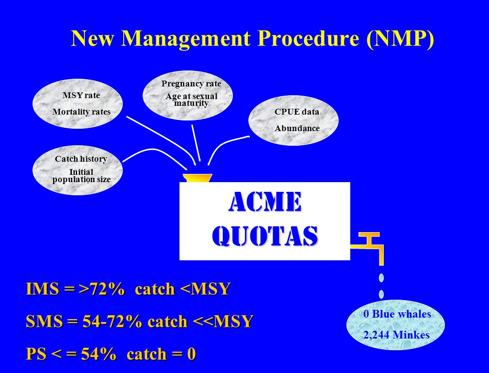 New Management Procedure (NMP) 0 Blue whales 2,244 Minkes Acme quotas MSY rate Mortality rates Pregnancy rate Age at sexual maturity CPUE data Abundance Catch history Initial population size IMS = >72% catch 72% catch <MSY SMS = 54-72% catch <<MSY PS < = 54% catch = 0