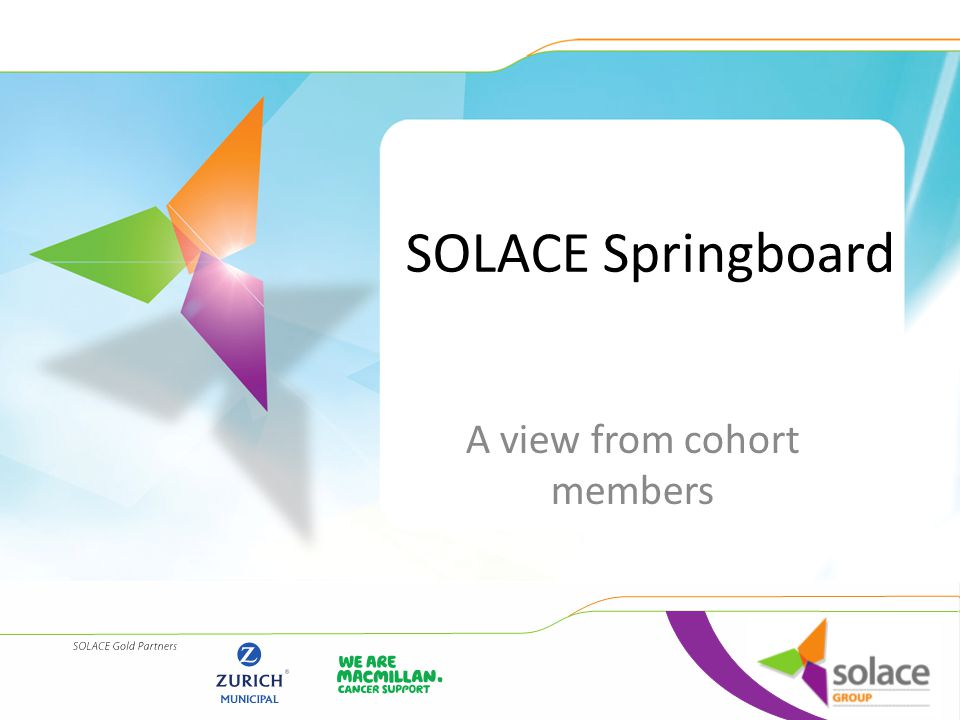 Purpose of the Programme Springboard 2014 was funded and led through the SOLACE foundation Springboard is a development programme to support ambitious and talented middle managers in Local Government to progress into senior roles