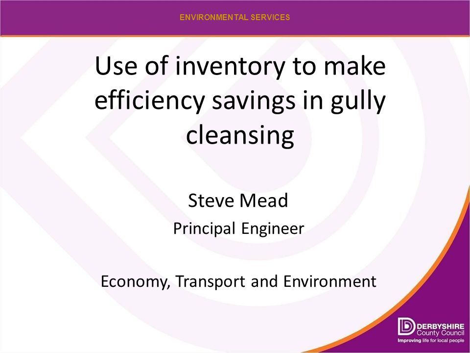 ENVIRONMENTAL SERVICES Use of inventory to make efficiency savings in gully cleansing Steve Mead Principal Engineer Economy, Transport and Environment