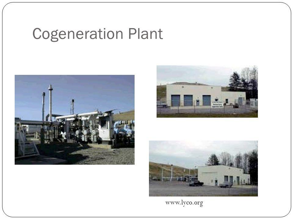 Cogeneration Plant www.lyco.org