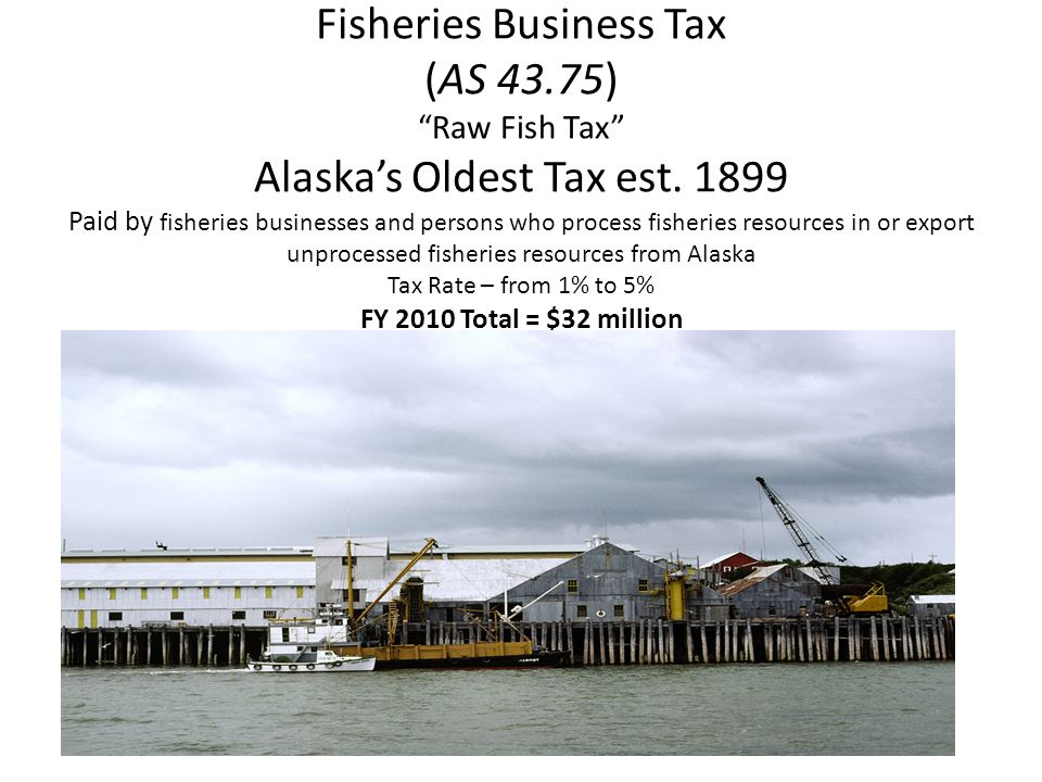 Fisheries Business Tax (AS 43.75) Raw Fish Tax Alaska's Oldest Tax est.