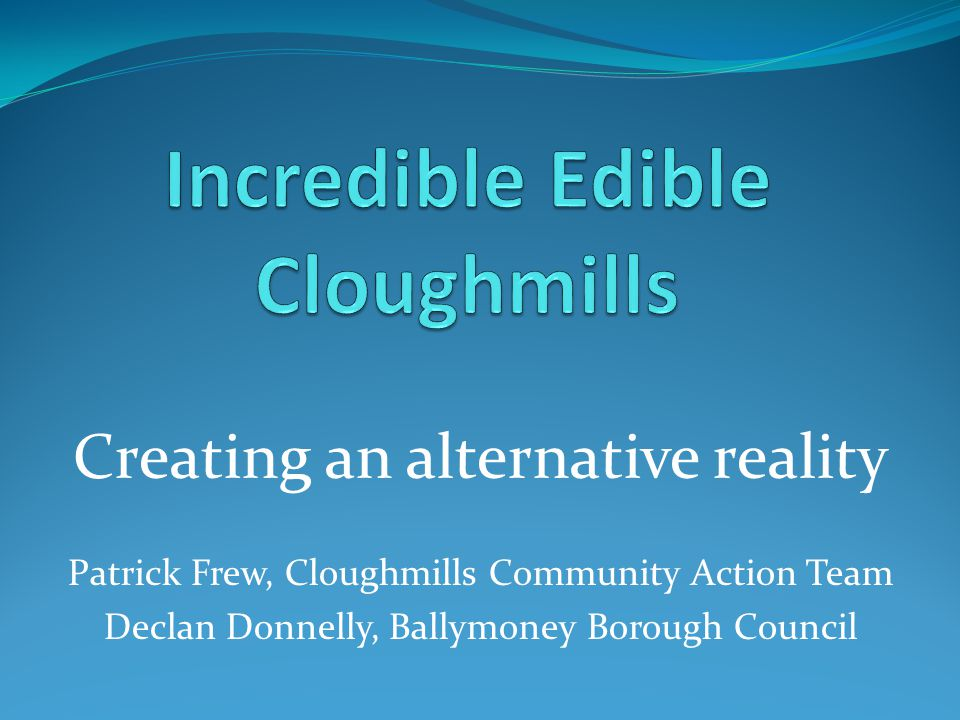 Community of Cloughmills 650 houses including rural area Approx 2,500 people Largest village in Ballymoney Borough 1/3 of residents are under 16 Village has grown in last 15 years Facilities and services haven't grown