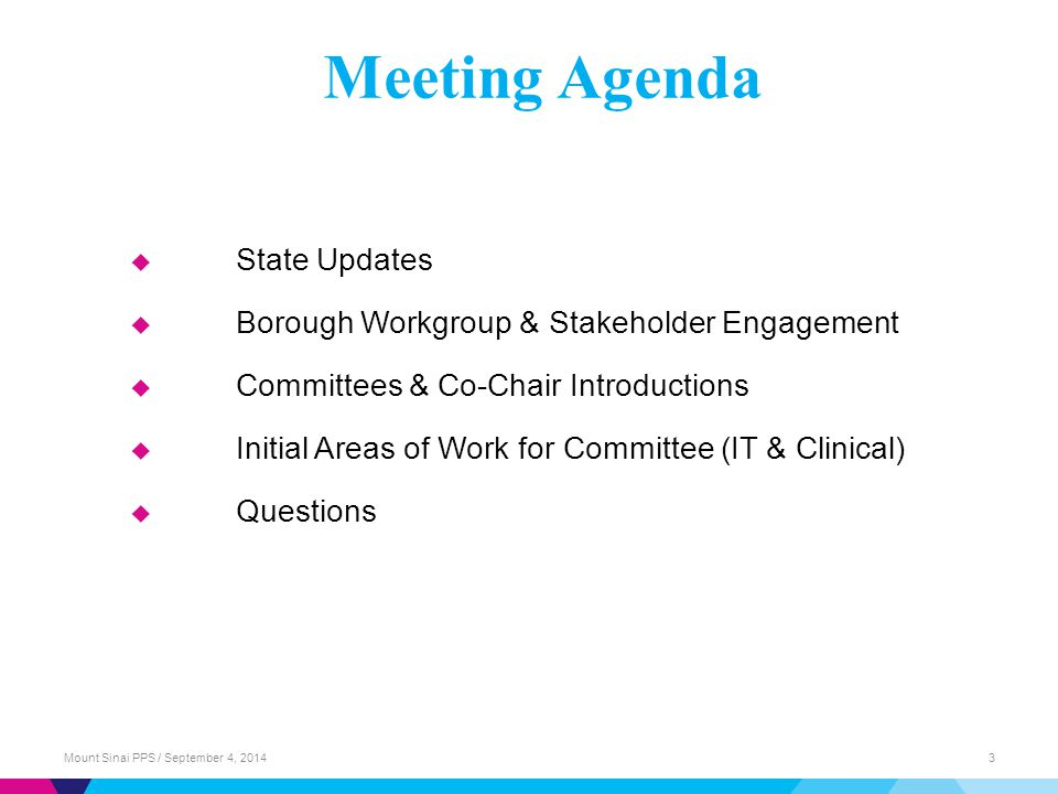  State Updates  Borough Workgroup & Stakeholder Engagement  Committees & Co-Chair Introductions  Initial Areas of Work for Committee (IT & Clinical)  Questions Meeting Agenda Mount Sinai PPS / September 4, 20143