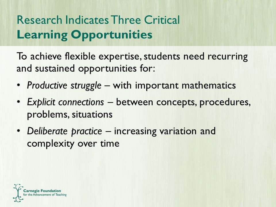 Research Indicates Three Critical Learning Opportunities To achieve flexible expertise, students need recurring and sustained opportunities for: Productive struggle – with important mathematics Explicit connections – between concepts, procedures, problems, situations Deliberate practice – increasing variation and complexity over time