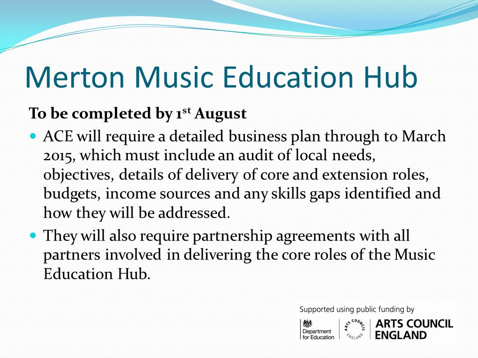 Merton Music Education Hub To be completed by 1 st August ACE will require a detailed business plan through to March 2015, which must include an audit of local needs, objectives, details of delivery of core and extension roles, budgets, income sources and any skills gaps identified and how they will be addressed.