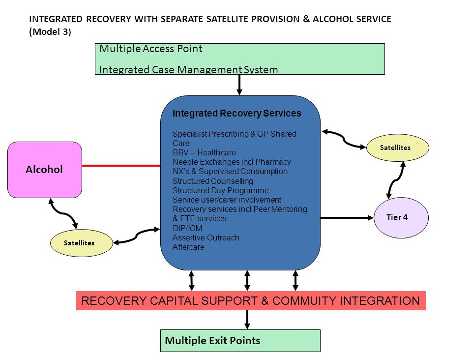 Multiple Access Point Integrated Case Management System Integrated Recovery Services Specialist Prescribing & GP Shared Care BBV – Healthcare Needle Exchanges incl Pharmacy NX's & Supervised Consumption Structured Counselling Structured Day Programme Service user/carer involvement Recovery services incl Peer Mentoring & ETE services DIP/IOM Assertive Outreach Aftercare Multiple Exit Points Tier 4 RECOVERY CAPITAL SUPPORT & COMMUITY INTEGRATION Alcohol INTEGRATED RECOVERY WITH SEPARATE SATELLITE PROVISION & ALCOHOL SERVICE (Model 3 ) Satellites