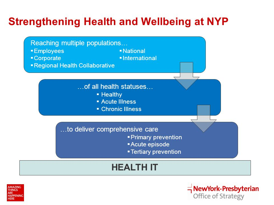 Strengthening Health and Wellbeing at NYP * 2017 represents when programs will be fully operational and mature - National - International HEALTH IT …of all health statuses…  Healthy  Acute Illness  Chronic Illness …to deliver comprehensive care  Primary prevention  Acute episode  Tertiary prevention Reaching multiple populations…  Employees  Corporate  Regional Health Collaborative  National  International