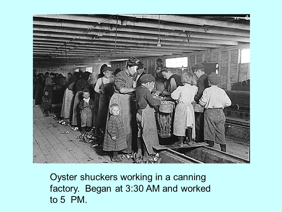 Oyster shuckers working in a canning factory. Began at 3:30 AM and worked to 5 PM.