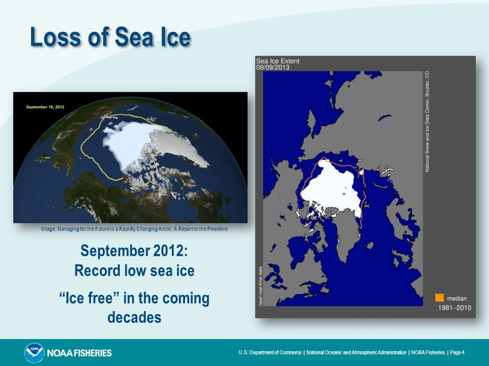 U.S. Department of Commerce | National Oceanic and Atmospheric Administration | NOAA Fisheries | Page 4 Loss of Sea Ice Image: Managing for the Future