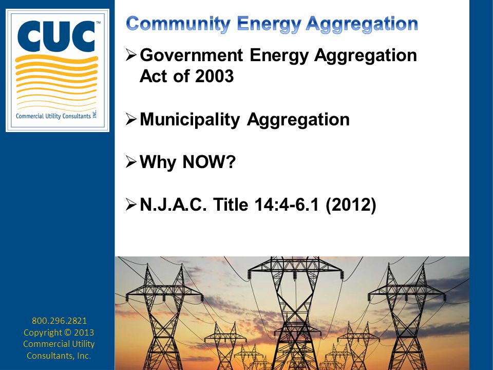  Ordinance – Municipality Reverse Energy Auction Select Winning Bidder (12, 18, 24)  Begin Outreach program to educate Ratepayers about the program  Repeat auction & process at conclusion of contract 800.296.2821 Copyright © 2013 Commercial Utility Consultants, Inc.
