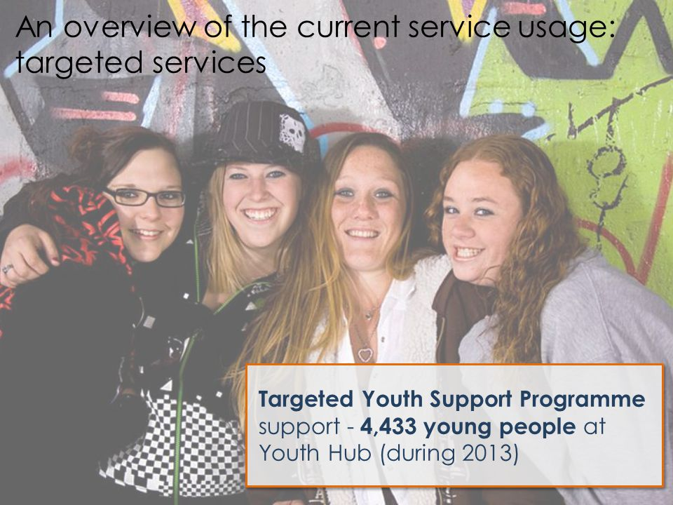 Targeted Youth Support Programme support - 4,433 young people at Youth Hub (during 2013) An overview of the current service usage: targeted services