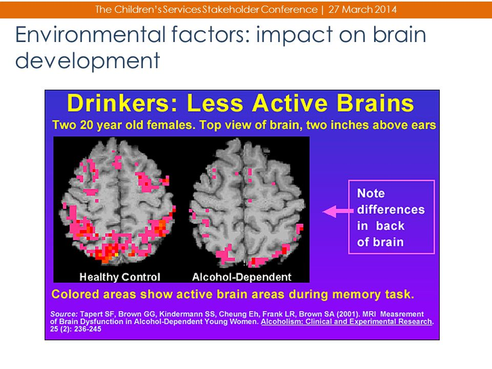 The Children's Services Stakeholder Conference | 27 March 2014 Environmental factors: impact on brain development