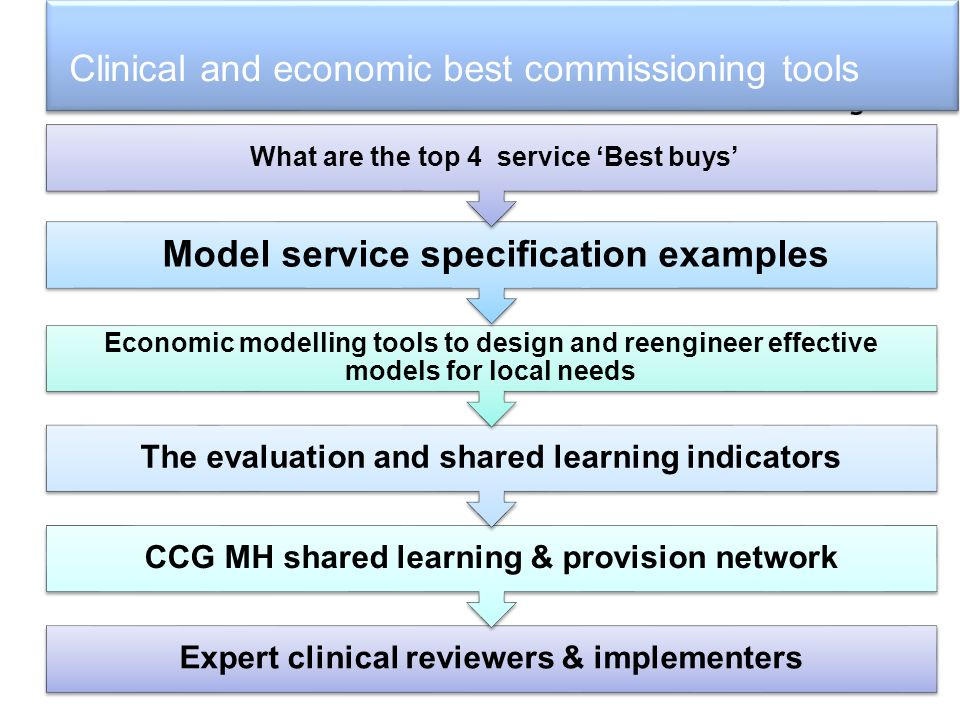 Clinical and economic best commissioning tools Expert clinical reviewers & implementers CCG MH shared learning & provision network The evaluation and shared learning indicators Economic modelling tools to design and reengineer effective models for local needs Model service specification examples What are the top 4 service 'Best buys'
