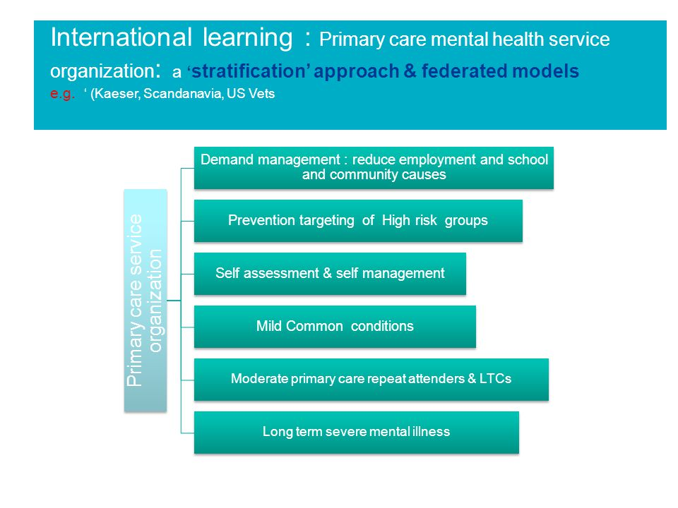 International learning : Primary care mental health service organization : a ' stratification' approach & federated models e.g.