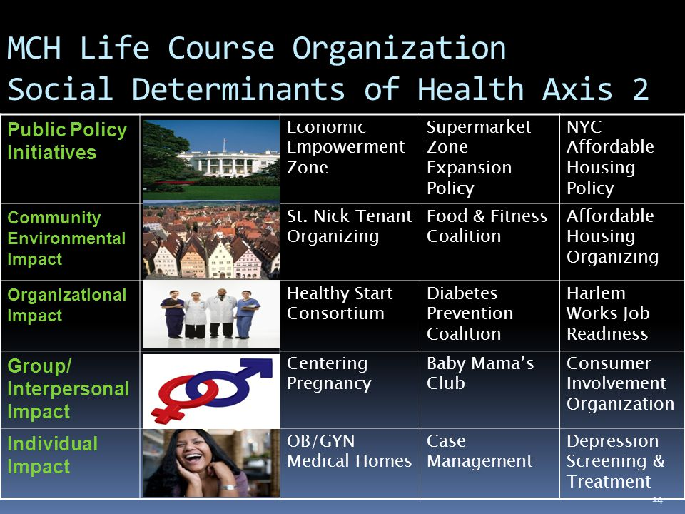 14 MCH Life Course Organization Social Determinants of Health Axis 2 Public Policy Initiatives Economic Empowerment Zone Supermarket Zone Expansion Policy NYC Affordable Housing Policy Community Environmental Impact St.