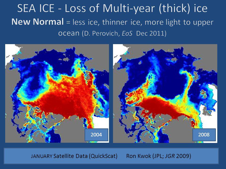20042008 JANUARY Satellite Data (QuickScat) Ron Kwok (JPL; JGR 2009)