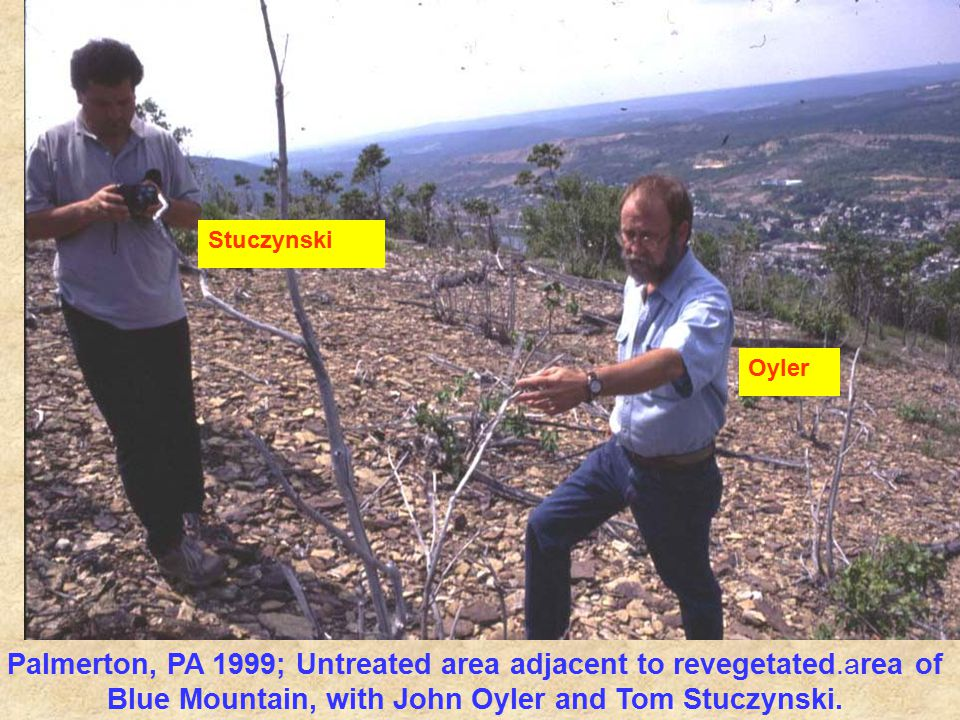 Palmerton, PA 1999; Untreated area adjacent to revegetated.area of Blue Mountain, with John Oyler and Tom Stuczynski.