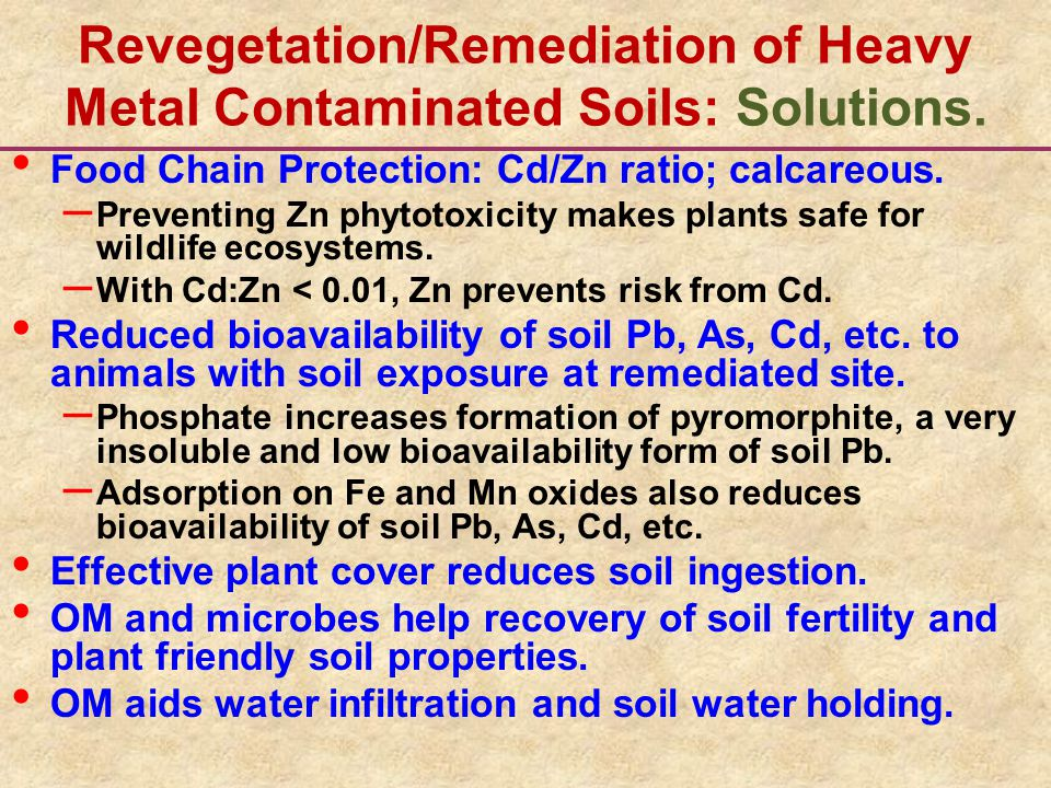 Revegetation/Remediation of Heavy Metal Contaminated Soils: Solutions. Food Chain Protection: Cd/Zn ratio; calcareous. – Preventing Zn phytotoxicity m