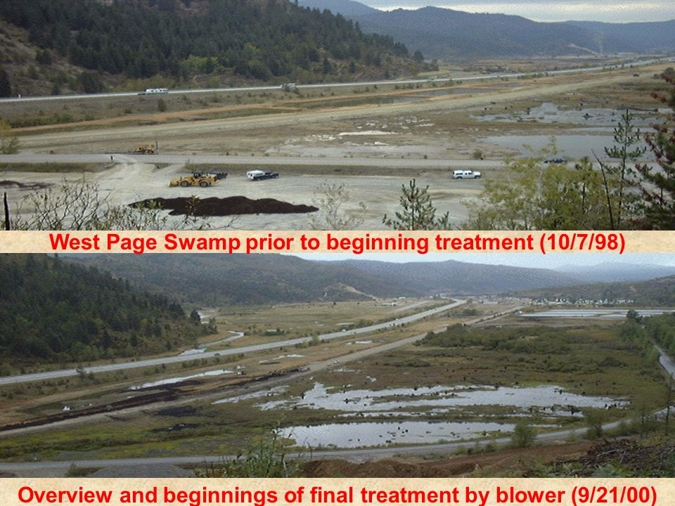 West Page Swamp prior to beginning treatment (10/7/98) Overview and beginnings of final treatment by blower (9/21/00)