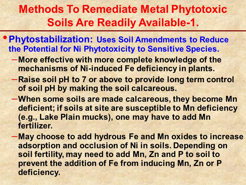 Methods To Remediate Metal Phytotoxic Soils Are Readily Available-1. Phytostabilization: Uses Soil Amendments to Reduce the Potential for Ni Phytotoxi