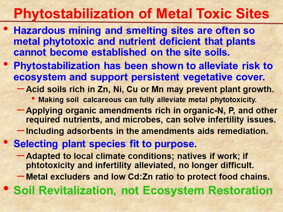 Phytostabilization of Metal Toxic Sites Hazardous mining and smelting sites are often so metal phytotoxic and nutrient deficient that plants cannot be
