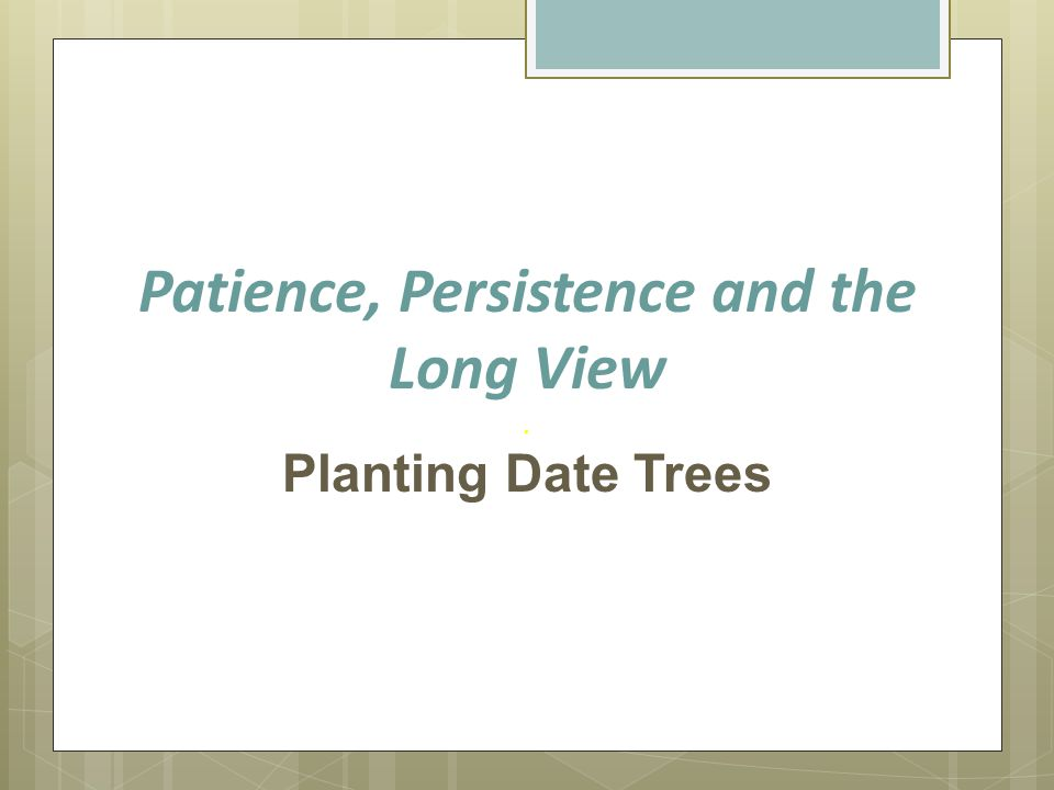 Patience, Persistence and the Long View. Planting Date Trees