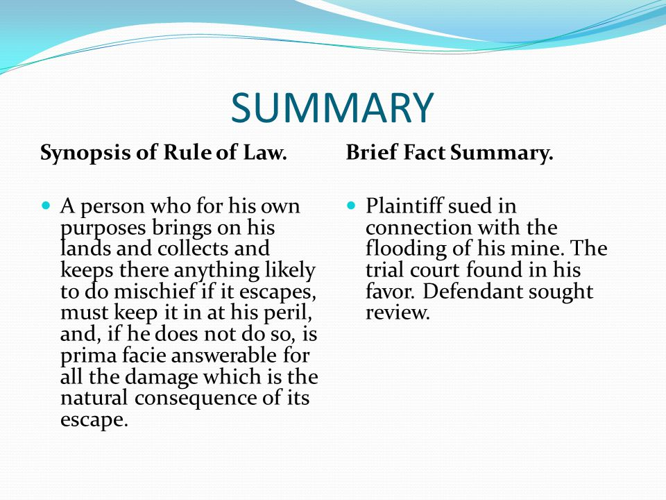 SUMMARY Synopsis of Rule of Law.