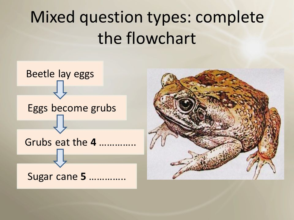 Mixed question types: complete the table Complete the table below.