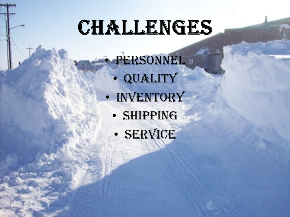 Challenges Personnel Quality Inventory Shipping Service