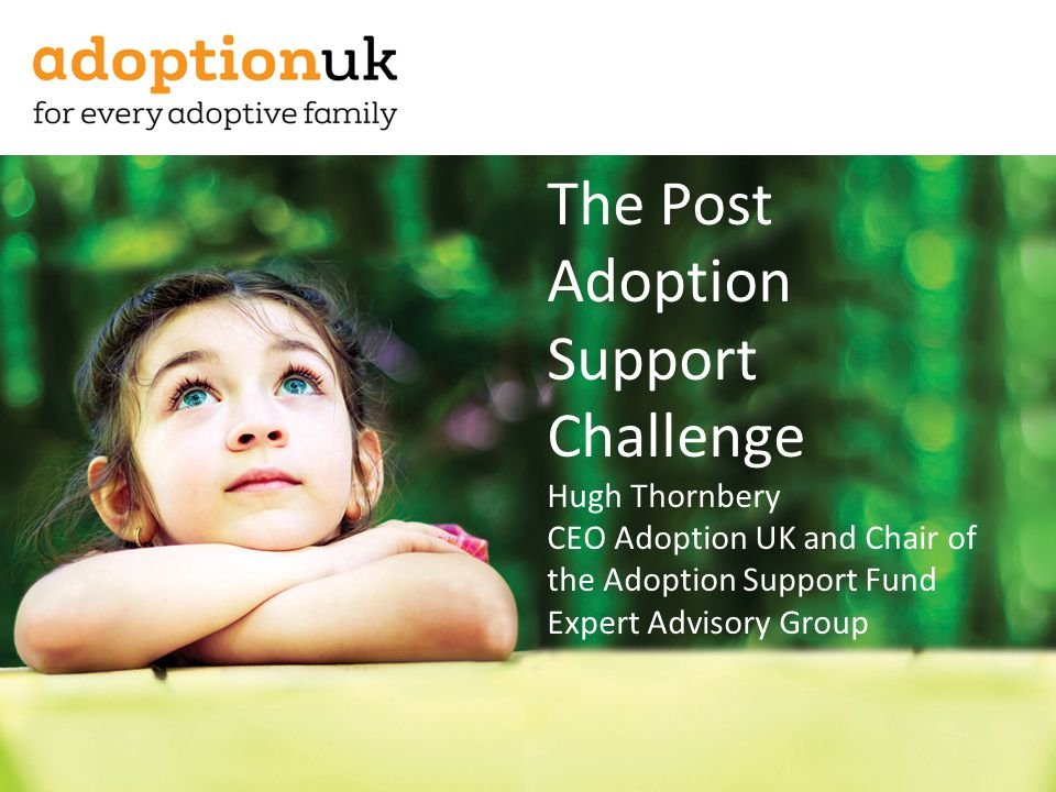 The Post Adoption Support Challenge Hugh Thornbery CEO Adoption UK and Chair of the Adoption Support Fund Expert Advisory Group