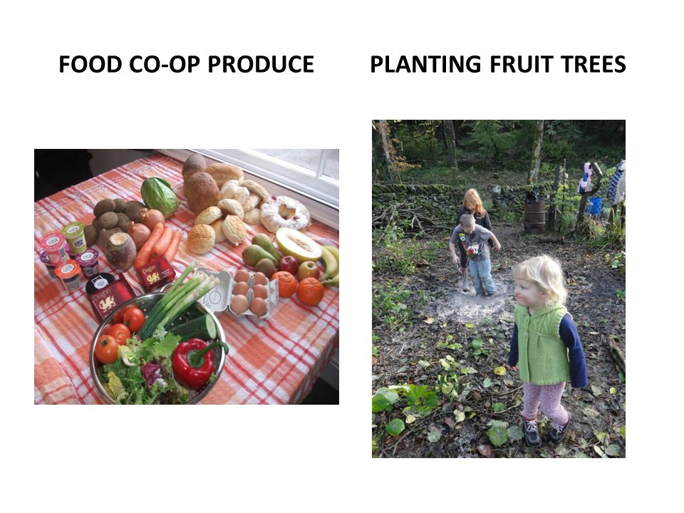 FOOD CO-OP PRODUCE PLANTING FRUIT TREES