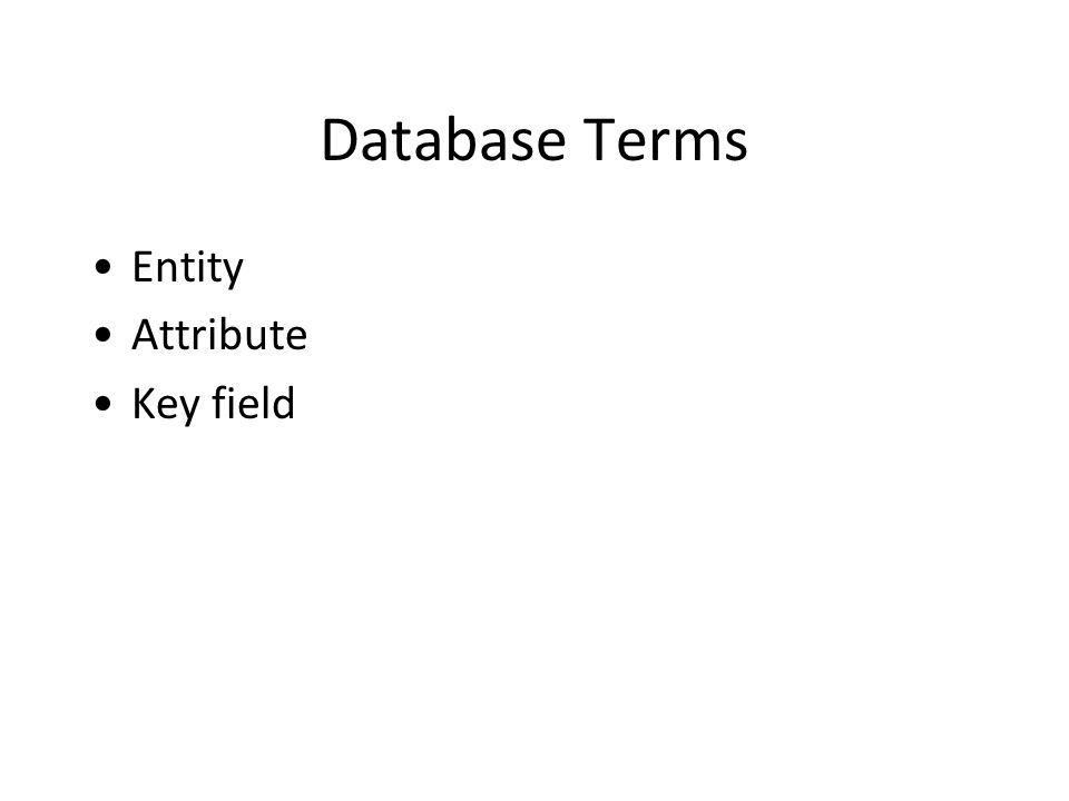 Database Terms Entity Attribute Key field