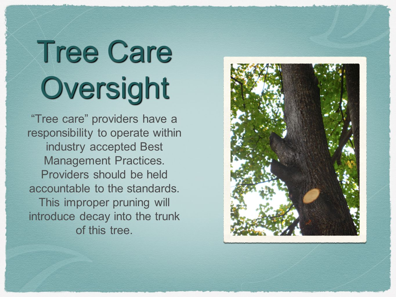 """Tree Care Oversight """"Tree care"""" providers have a responsibility to operate within industry accepted Best Management Practices. Providers should be hel"""