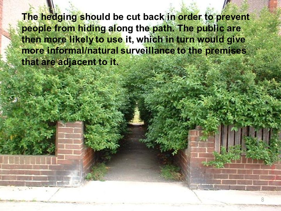 8 The hedging should be cut back in order to prevent people from hiding along the path.