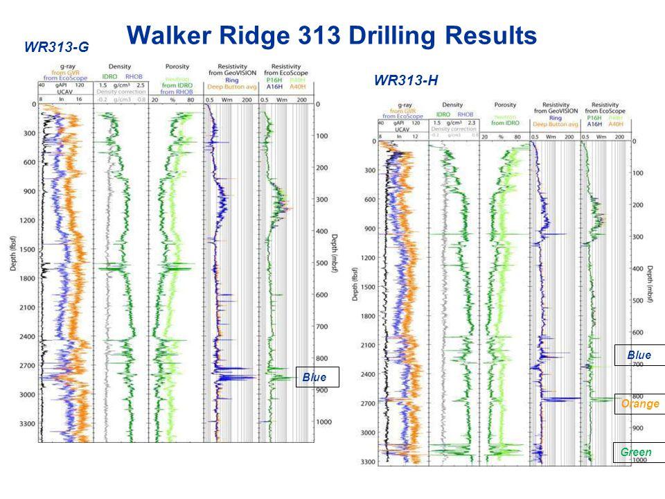 Walker Ridge 313 Drilling Results WR313-G WR313-H Blue Orange Blue Green