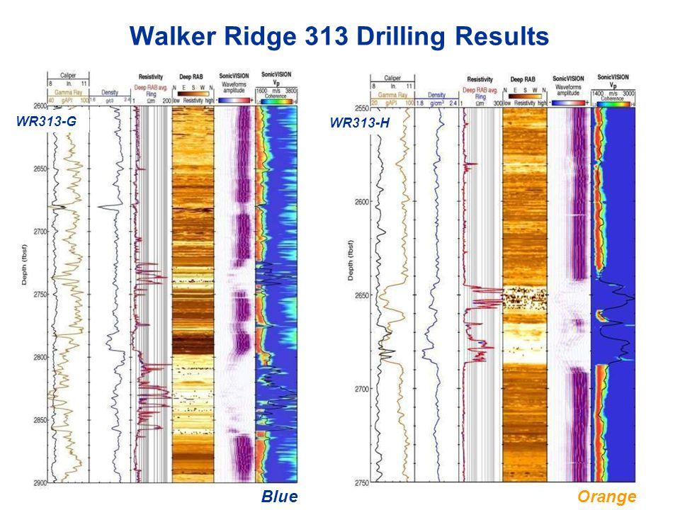 Walker Ridge 313 Drilling Results WR313-G WR313-H BlueOrange