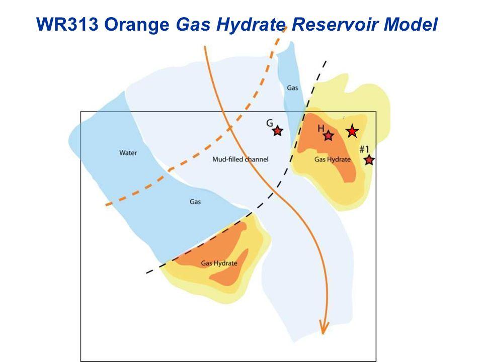 I WR313 Orange Gas Hydrate Reservoir Model