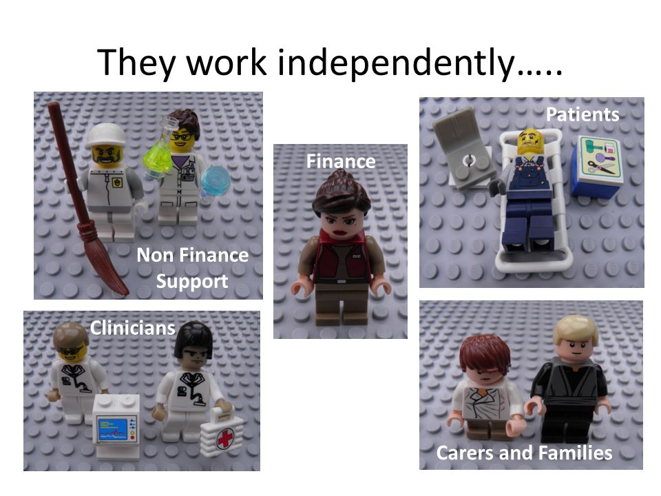 They work independently….. Carers and Families Clinicians Finance Non Finance Support Patients