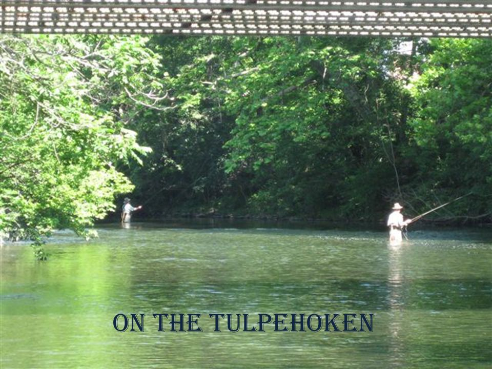 On the Tulpehoken