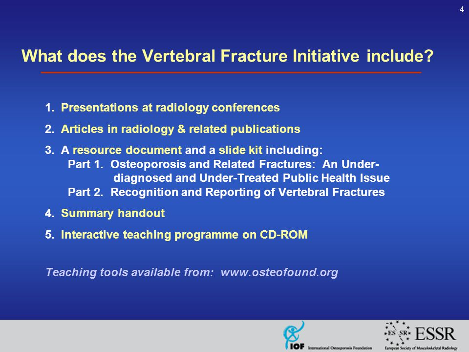 4 What does the Vertebral Fracture Initiative include.