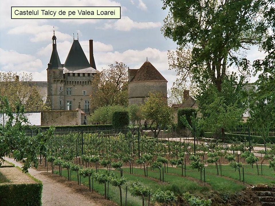 4/17/201530 Castelul Talcy de pe Valea Loarei