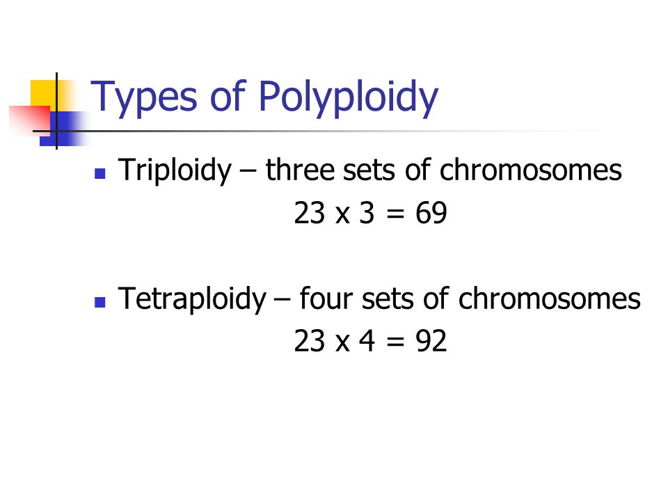 Types of Polyploidy Triploidy – three sets of chromosomes 23 x 3 = 69 Tetraploidy – four sets of chromosomes 23 x 4 = 92