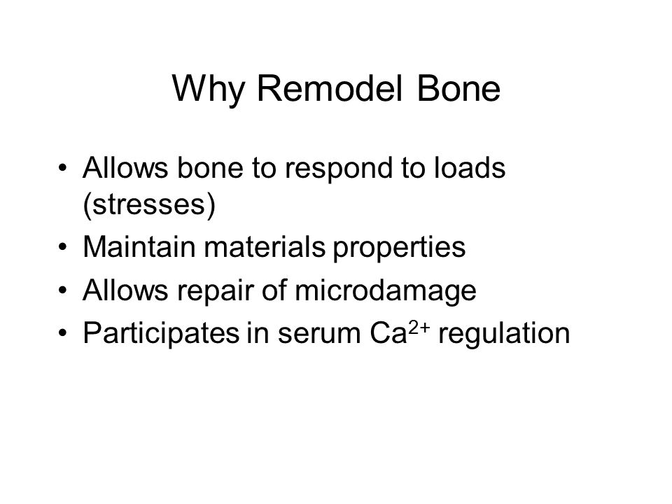 Why Remodel Bone Allows bone to respond to loads (stresses) Maintain materials properties Allows repair of microdamage Participates in serum Ca 2+ regulation