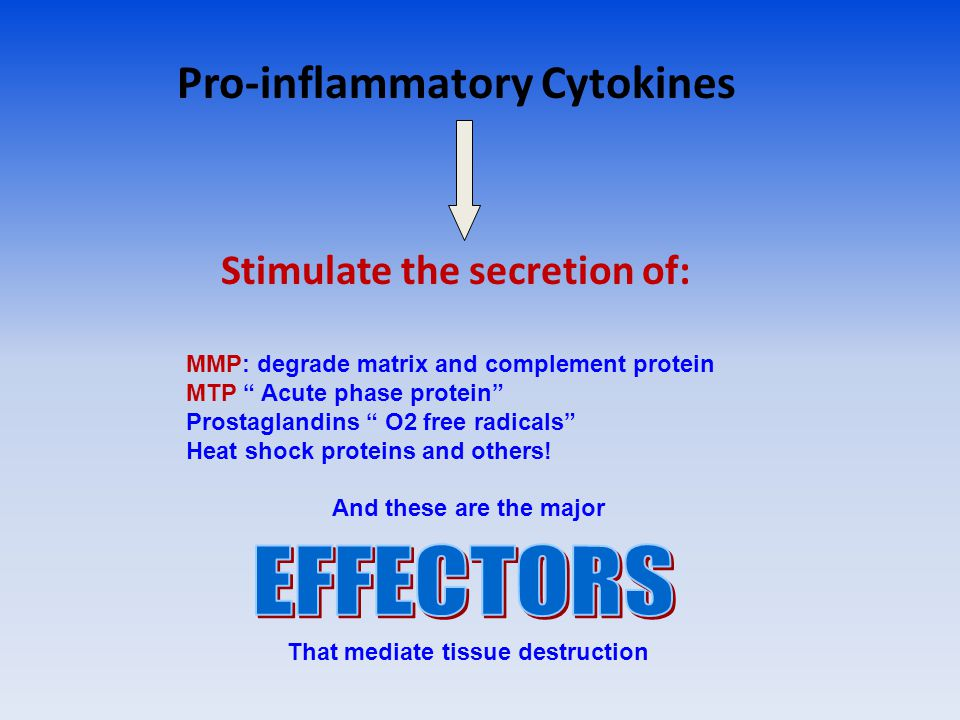 Pro-inflammatory Cytokines Stimulate the secretion of: MMP: degrade matrix and complement protein MTP Acute phase protein Prostaglandins O2 free radicals Heat shock proteins and others.