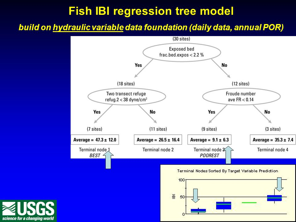 Fish IBI regression tree model build on hydraulic variable data foundation (daily data, annual POR)