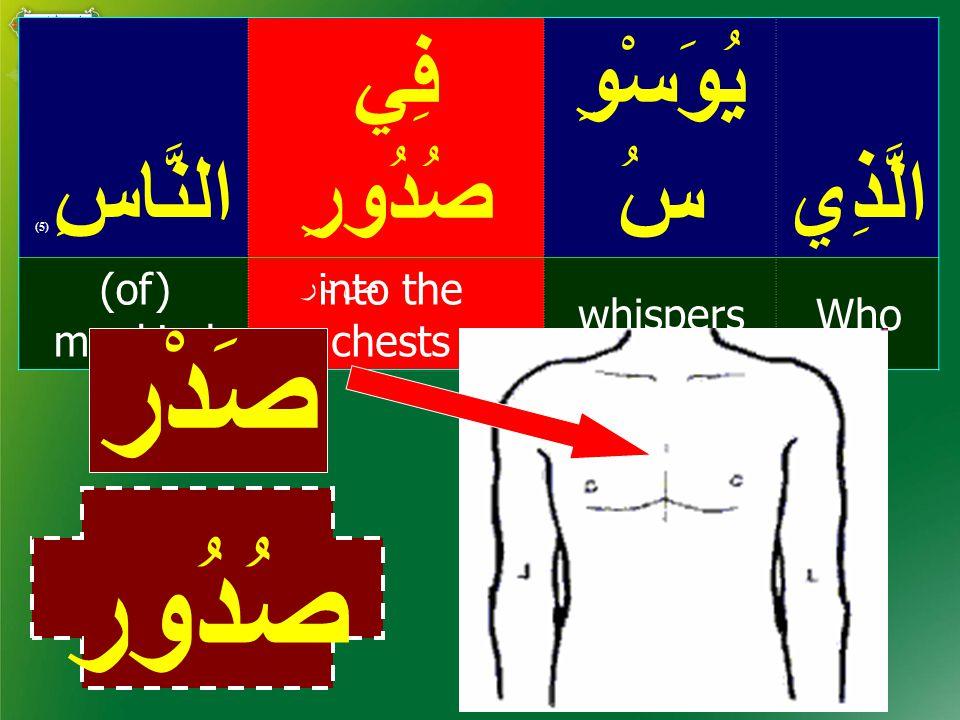 الَّذِي يُوَسْوِ سُ فِي صُدُورِالنَّاسِ ( 5) Whowhispers into the chests (of) mankind ص د ر صُدُور صَدْر